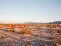 10 Acres On Paved Road In 29 Palms : Twentynine Palms : San Bernardino County : California