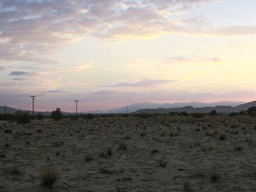 Amazing Location To Own 10 Acres : Twentynine Palms : San Bernardino County : California