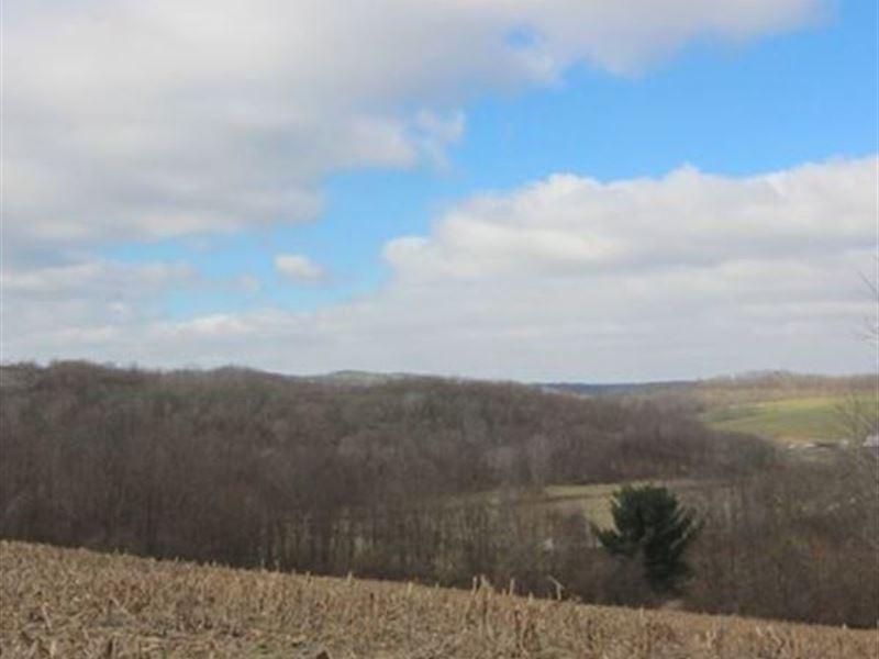 Tr 409 - 44 Acres : Warsaw : Coshocton County : Ohio