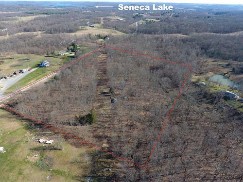 Wintergreen Rd - 12 Acres : Lore City : Coshocton County : Ohio