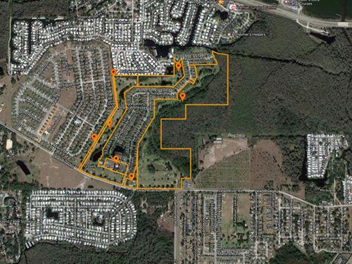 89 Acres Ready For Residential Dev. : Tavares : Lake County : Florida