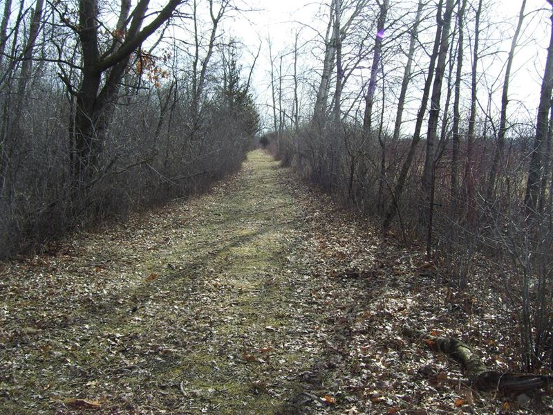 Trophy Whitetail Hunting Property : Pardeeville : Columbia County : Wisconsin
