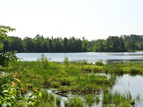 Mls 163460 - Haskell Lk : Lac Du Flambeau : Vilas County : Wisconsin