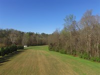 Nearly 10 Unrestricted Acres : Talbott : Hamblen County : Tennessee