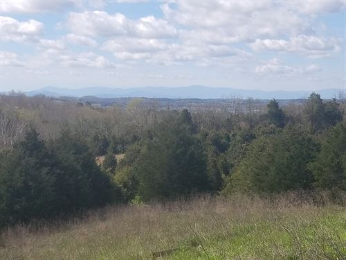 53.46 Acres Horse/Cattle Property : Mosheim : Greene County : Tennessee
