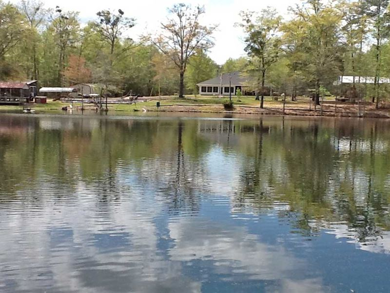 Pigeon Creek Tract With House : Greenville : Butler County : Alabama