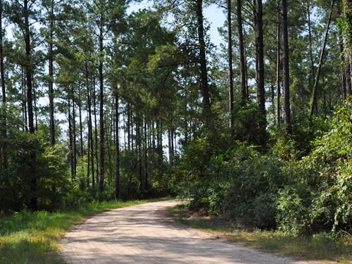 42 Ac Palmer Road : Rye : Liberty County : Texas