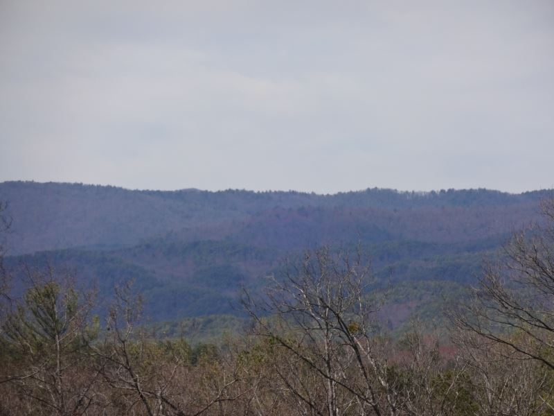 67.33 Acres With Gorgeous Rolling : Salem : Oconee County : South Carolina