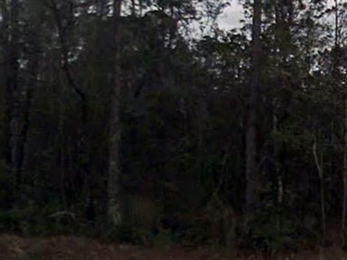 Nassau County, Florida $40,000 Neg : Callahan : Nassau County : Florida