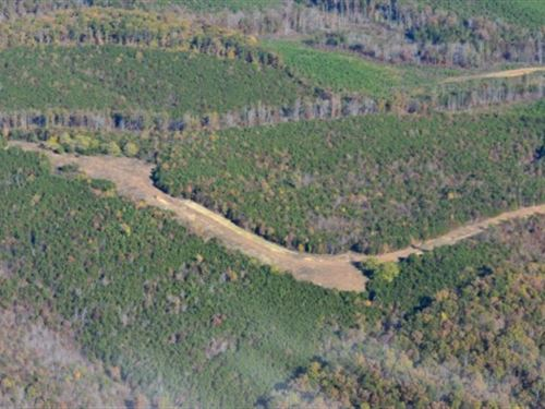 Great Wooded Tract : Lynch Station : Bedford County : Virginia