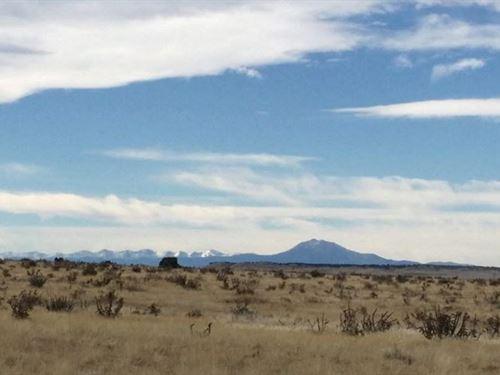 74.62 Acres Ranch 2 & 3 : Thatcher Pinon Canyon : Las Animas County : Colorado