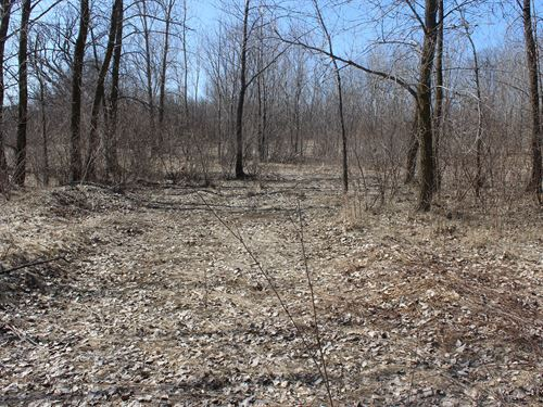 Potential Building Site W/ Hunting : Brownsville : Fond Du Lac County : Wisconsin