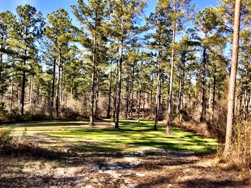 2000+- Contiguous Acres Middle Ga : Roberta : Crawford County : Georgia