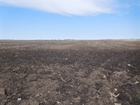 Crop Land With Rec. Benefits : Willow Lake : Clark County : South Dakota