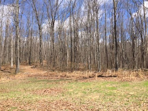 28.89+/-Wooded Hunting Property : Sewanee : Marion County : Tennessee