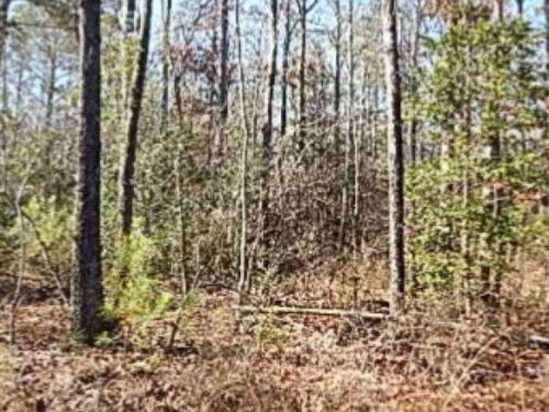 47 Acres In Covington County : Taylorsville : Covington County : Mississippi