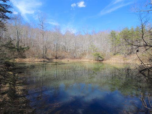 Murphy Remy Rd - 19 Acres : McArthur : Vinton County : Ohio