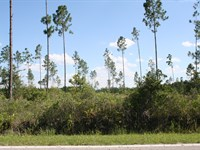 9.33 Acres- Andrews Rd : Hilliard : Nassau County : Florida