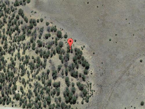 Cibola County, New Mexico $12,500 : Pinehill : Cibola County : New Mexico