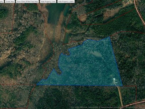 33 Acres With Lake Frontage : Huntingdon : Carroll County : Tennessee