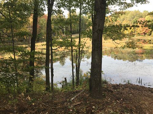 On Allen Pond : Williamstown : Oswego County : New York