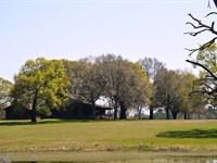 Golden Farm : Cedar Springs : Early County : Georgia