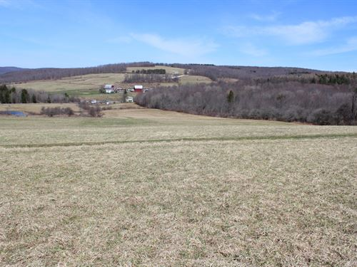 59 Acres Farmland Ithaca Ny Organic : Caroline : Tompkins County : New York