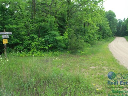 Wooded Lots Near Grant River : Waterloo : Grant County : Wisconsin