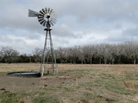 Wild Horse Creek Pasture : Staoleton : Logan County : Nebraska