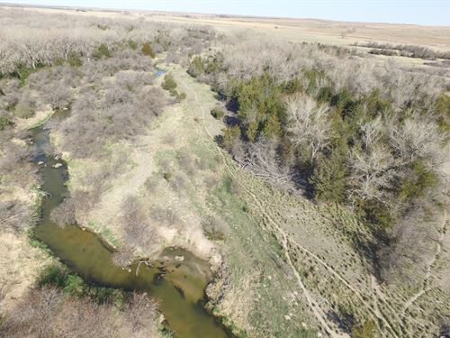 Republican River Wildlife & Hunting : Benkelman : Dundy County : Nebraska