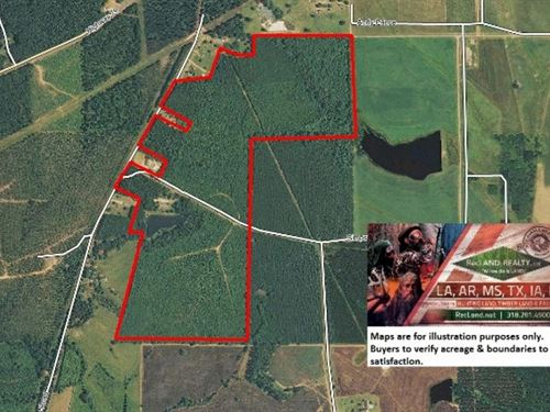 141 Ac Turnkey Recreational Tract : Homer : Claiborne Parish : Louisiana