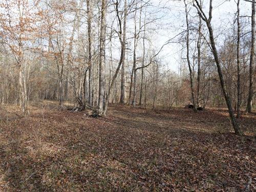Little Gladesville Creek Farms : Juliette : Jasper County : Georgia