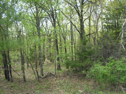 29.25 M/L Acres : Tahlequah : Cherokee County : Oklahoma