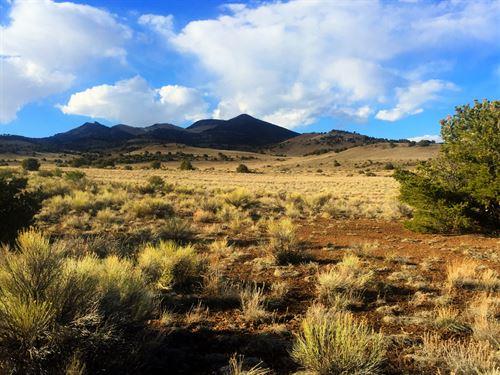 5/25 Auction Ten 40 Acre Homesites : Del Norte : Rio Grande County : Colorado