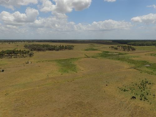 500+/- Acre Ranch For Sale : Okeechobee : Florida