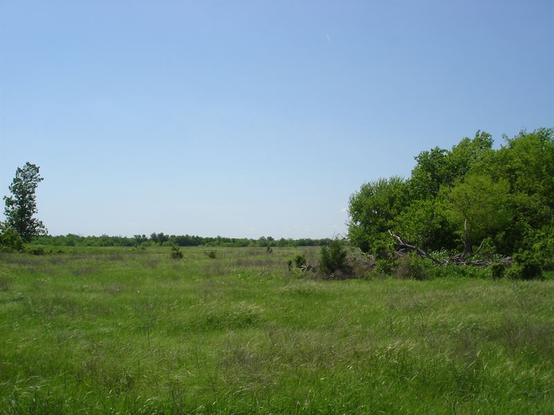 Acreage Ne Tx, Lamar Country : Paris : Lamar County : Texas