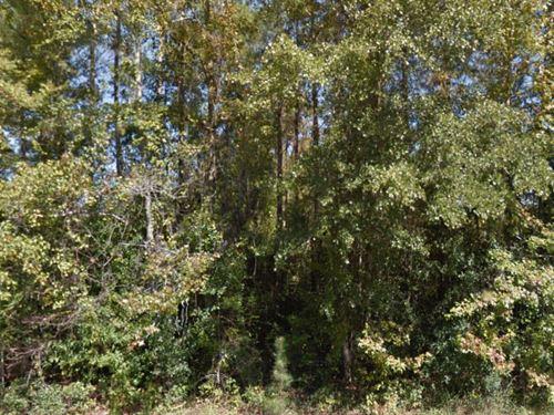 Bibb County, Georgia $75,000 Neg : Macon : Bibb County : Georgia