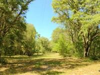 20 Acre Citra Estate : Citra : Marion County : Florida