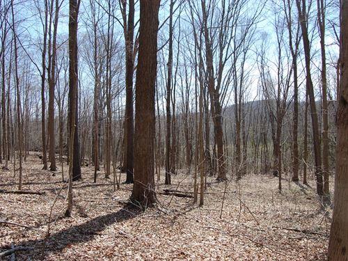 Mingo Rd - 9 Acres : Chillicothe : Ross County : Ohio