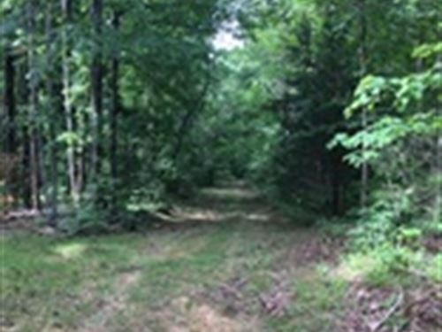 23 Wooded Acres In Adair County, Ky : Columbia : Adair County : Kentucky