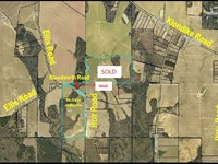 100 Acres Of Cultivatable Land : Elko : Houston County : Georgia