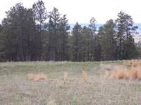 Land, Land, Land : Sundance : Crook County : Wyoming