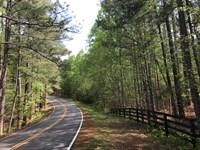 49.219 +/- Wooded Acres, White, Ga : White : Bartow County : Georgia