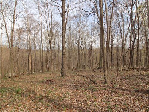 Tr 56 - 7 Acres : Mount Perry : Perry County : Ohio