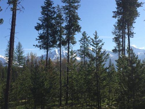 Elk Creek Preserve : Condon : Missoula County : Montana