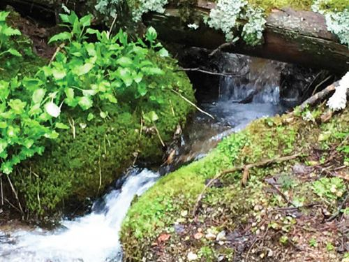 Douglas Creek Recreational Gem : Hall : Granite County : Montana