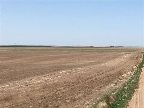 Deuel County Dryland : Lewellen : Deuel County : Nebraska