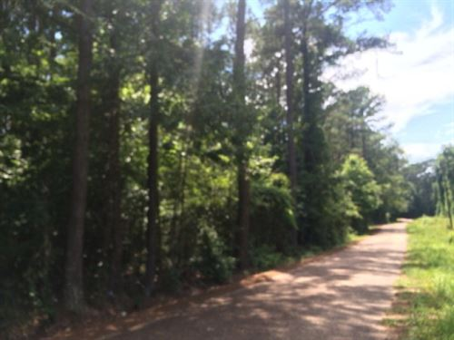 9.56+/ Acres For Sale Lincoln Count : Bogue Chitto : Lincoln County : Mississippi