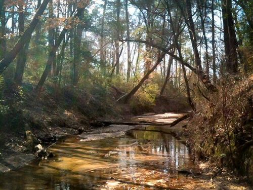 683 Acres Cr 3400 : Colmesneil : Tyler County : Texas