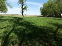 Thompson 80 : Roxbury : McPherson County : Kansas